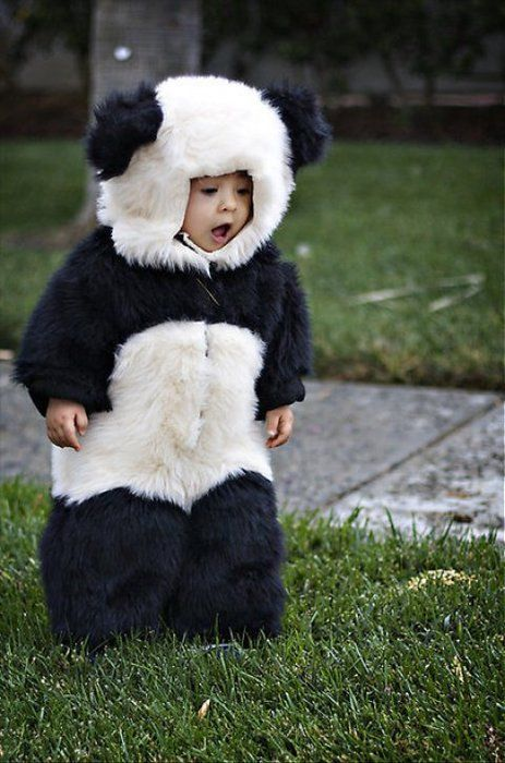 Panda bear baby costume {cute baby costumes} 25 Comments In case you are new here, I have a tiny bit of an obsession with handmade costumes, specifically super easy baby costumes for my sweet baby .